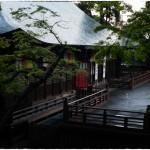 雨上がりの喜多院