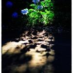 小江戸川越散歩105