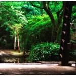 小江戸川越散歩107
