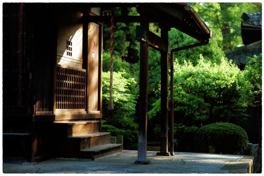 「新緑の頃」 小江戸川越散歩173